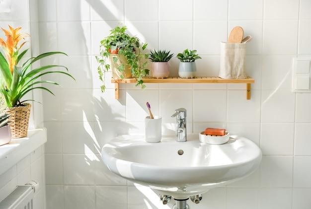화창한 날 창 옆에 세면대가 있는 흰색 욕실. 선반과 배경에 그림자에 녹색 계획입니다. 제로 웨이스트, 친환경 제품, 지속 가능성. 도시 정글. 웰빙