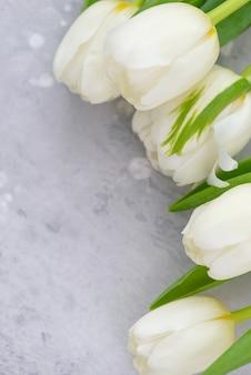 母の日の挨拶のためのコピースペースと白い美しいチューリップ