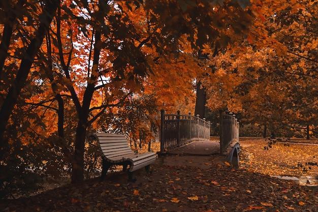 暗い秋の公園の橋の近くの白いベンチ地面にたくさんの葉