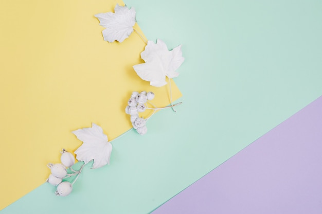 White berries and leaves on a multicolor pastel autumn background