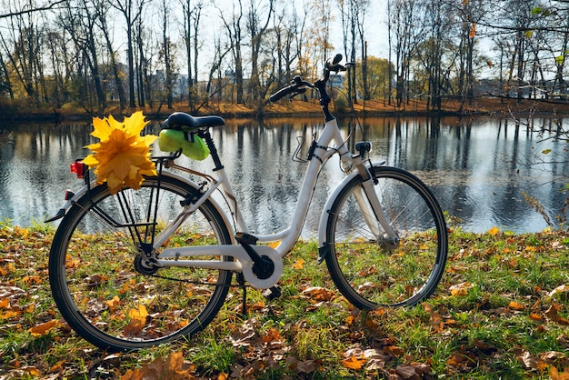 White bike with yellow leaves on the trunk