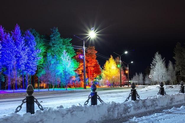 Белые березы на морозе зимним вечером