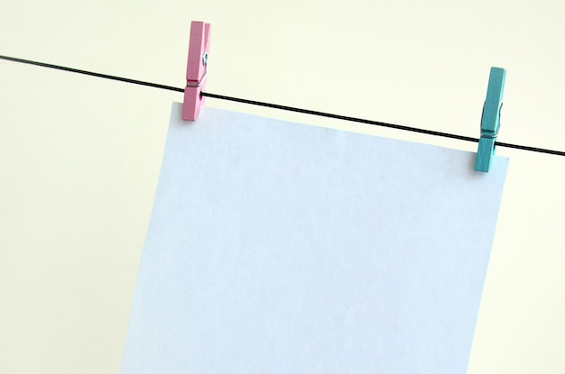 White blank cards on rope, light wall background.