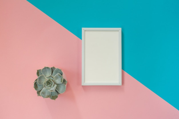 White blank frame on blue and pink  for mockup and succulent pot. flat lay