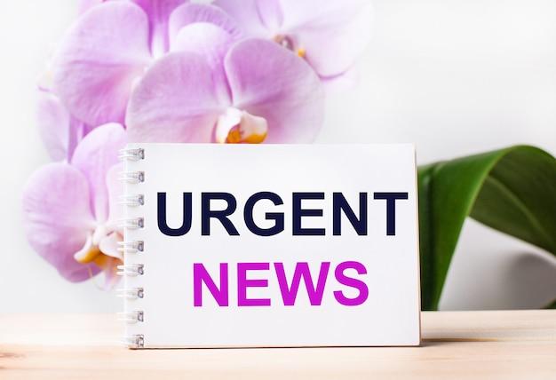 밝은 분홍색 난초의 배경에 대해 테이블에 urgent news라는 텍스트가 있는 흰색 빈 공책.