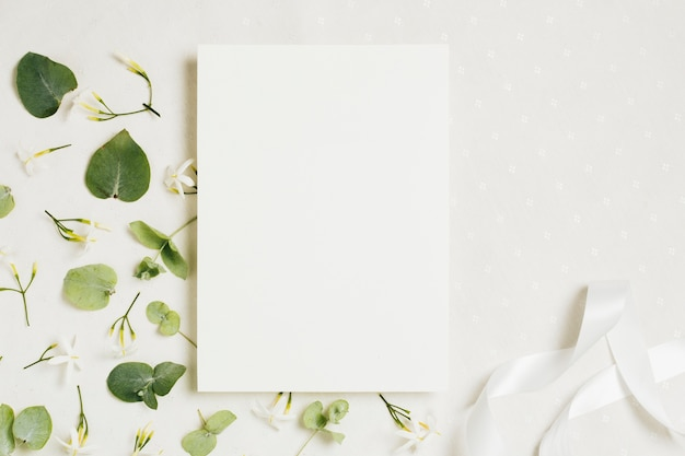 White blank wedding card with jasminum auriculatum flowers and ribbon on white backdrop