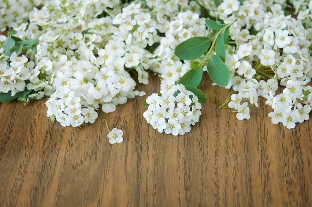 木製のテーブルに白い花の木の花