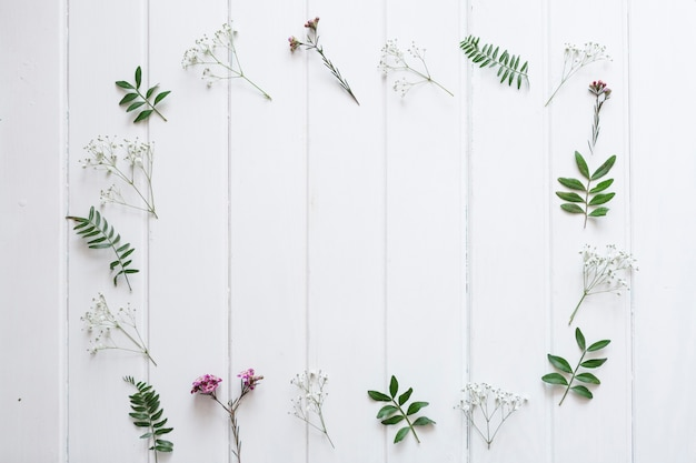 Schede bianche con cornice floreale