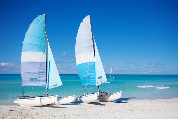White boats on a sandy beach in the summer