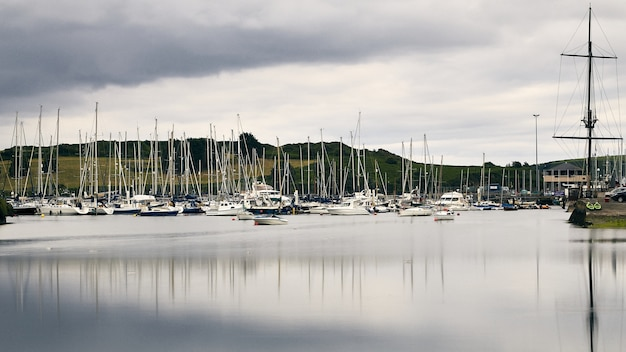 White boats on the shoreline of kinsale