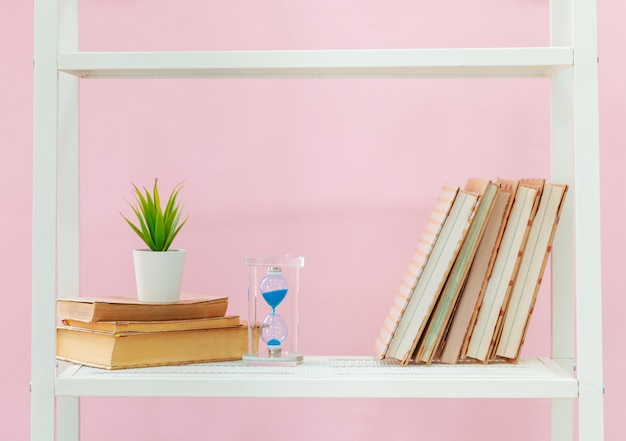 White bookshelf with books and plant against pink wall