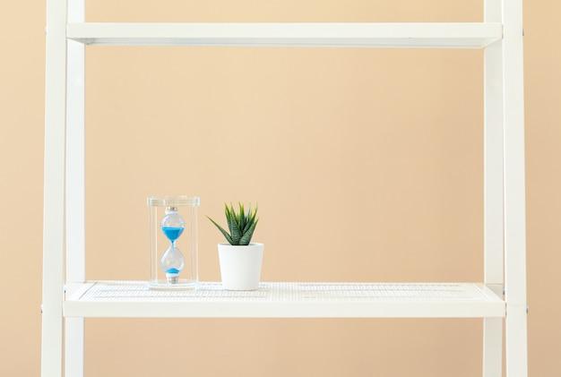 Белая книжная полка с растением в горшке на бежевом фоне