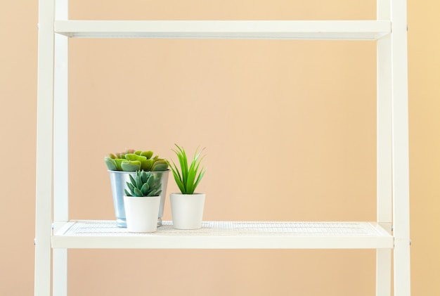 White bookshelf with plant in pot against beige