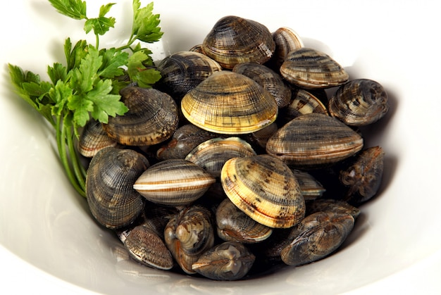 White bowl of clams  with parsley