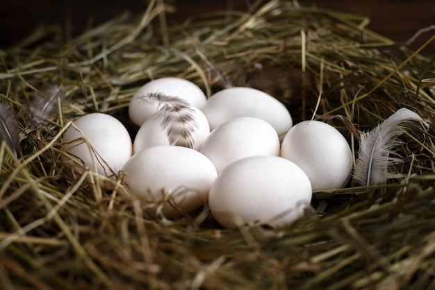 White and brown eggs on straw and wooden dark background.