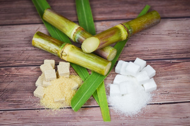 White and brown sugar cubes and sugar cane