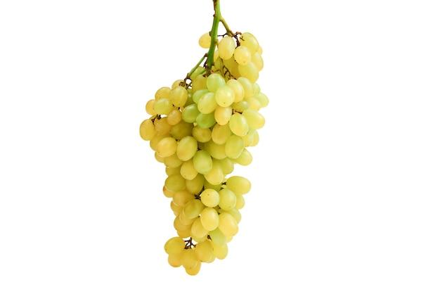 孤立した白い背景の上のブドウの白い束