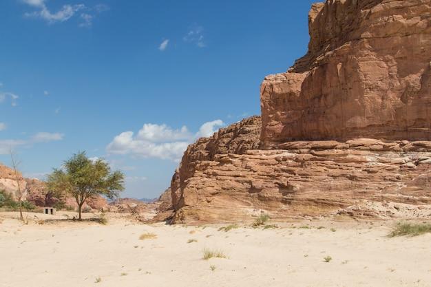 Белый каньон с желтыми скалами. египет, пустыня, синайский полуостров, дахаб.