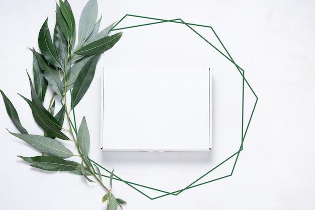 White cardboard box with tree brush