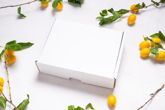 신선한 녹색 잎을 가진 백색 마분지 판지 상자