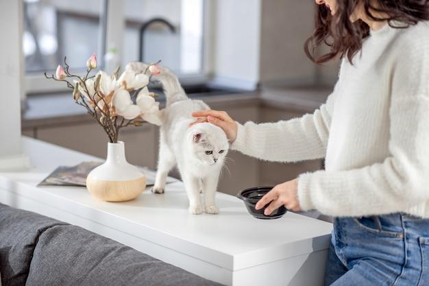 하얀 고양이. 그녀의 흰 고양이 쓰 다듬어 귀여운 젊은 여자