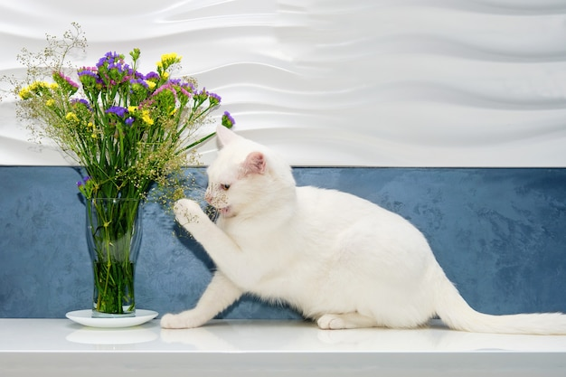 White cat plays and sniffs flowers in a vase.