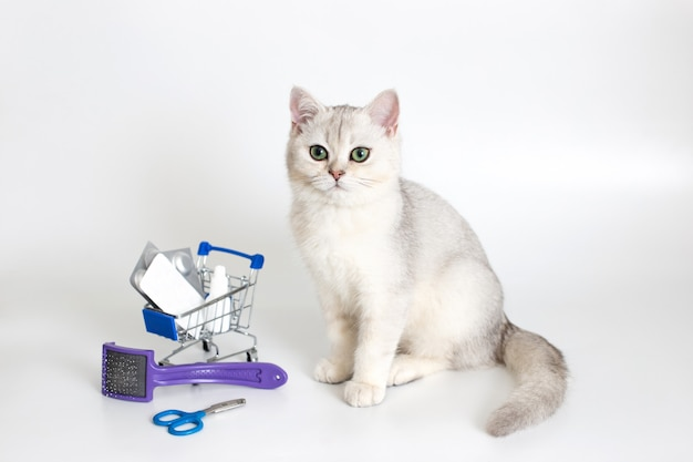 White cat sits on a white background with a shopping trolley full of pills and medicines. nearby are claw scissors and a comb. medicines and products for the care of pets.