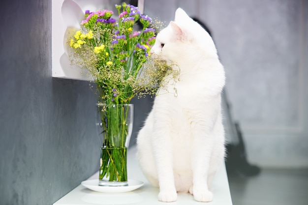 White cat sniffs flowers in a vase on a pedestal