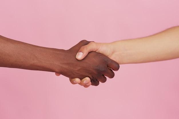 白い白人の手と黒い手はピンクの背景に握手します。多民族の尊重と理解の概念。