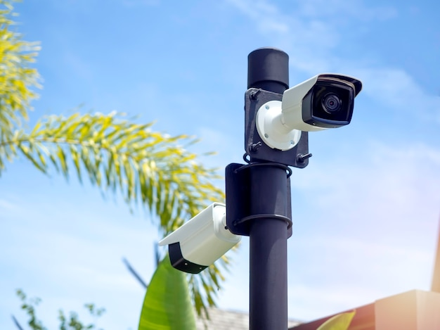 White cctv cameras on the black pole in the garden near the building
