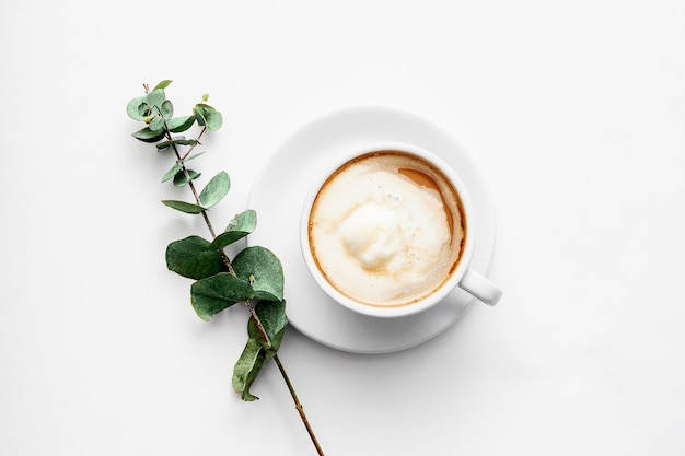 White ceramic cup with cappuccino and a green twig on a white background