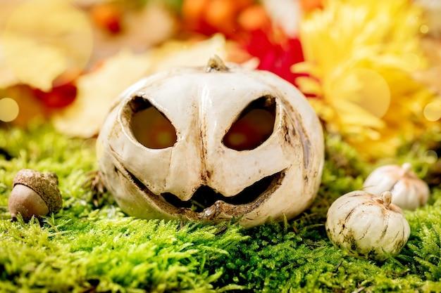 Белые керамические тыквы jack-o-lantern на мхе. осеннее сезонное приветствие хэллоуина