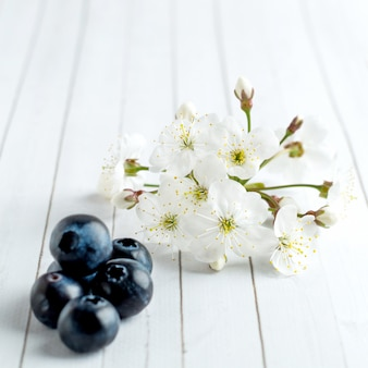 White cherry blossom and blueberry close up