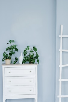 A white chest of drawers and potted plants on it, a white stepladder against a light blue wall. living room interior