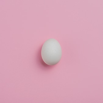 White chicken egg on pink table