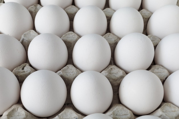 판지에있는 흰색 닭고기 달걀