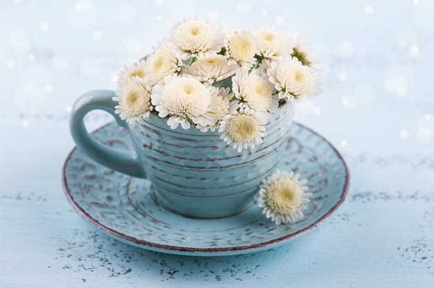 White chrysanthemum flowers in blue cup