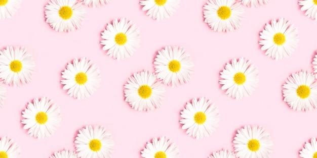 Бесшовный узор из белых хризантем.