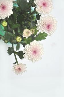白地に緑の葉と白い菊