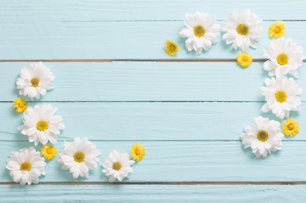 White chrysanthemum and yellow coltsfoot on blue wooden background