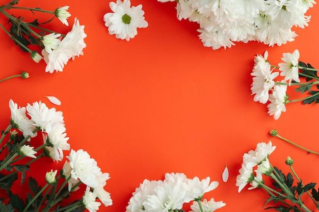 Белые хризантемы на красном фоне, место для текста.