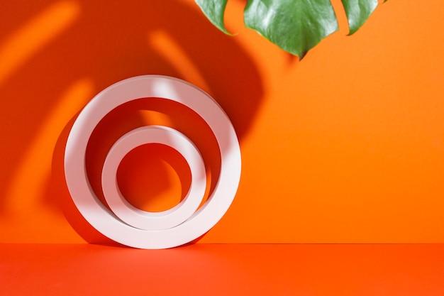 モンステラの葉の影の下でのプレゼンテーションのための白い円の楕円形の表彰台
