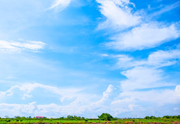 White clouds and blue sky with trees of beautiful view landscape use for advertisement