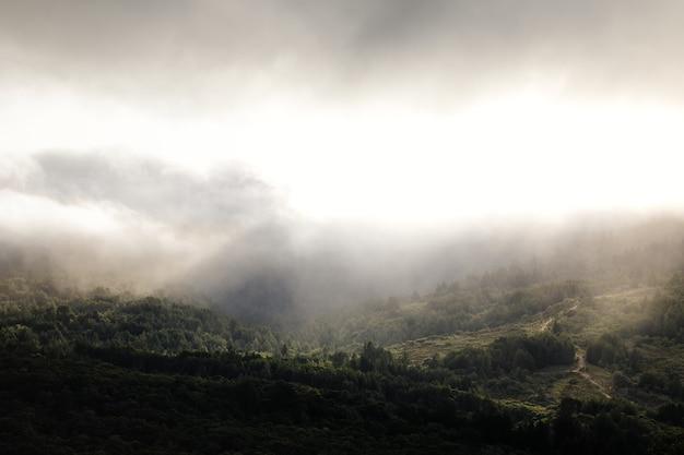 白い雲霧の日