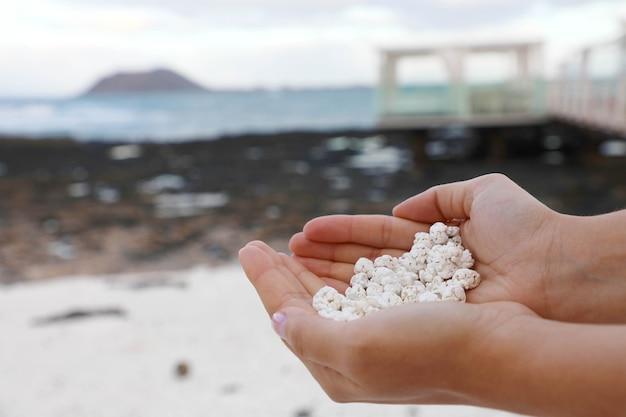 Обрывки белых кораллов, похожие на попкорн, которые держат руками, на фуэртевентуре, испания