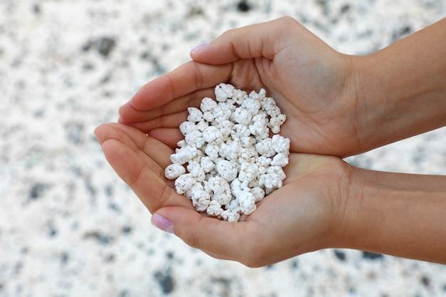 Обрывки белых кораллов, похожие на попкорн, в плайя-де-майаничо, фуэртевентура.