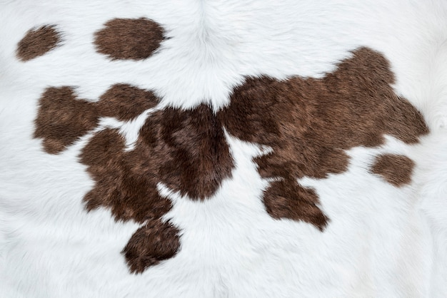 Pelle di mucca bianca con sfondo di macchie marroni