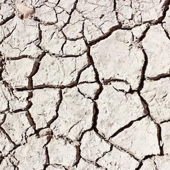 白いひびの入った地球。乾いた土の質感