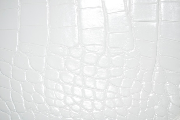 白いワニのワニ皮白い革の背景