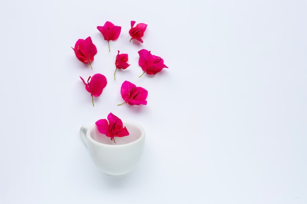 White cup with red bougainvillea flower on white background.
